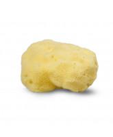 Organic silk sponge