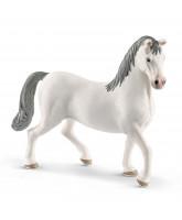 Lipizzaner - stallion