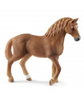 Quarter horse - mare