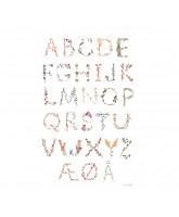 Poster - Danish alfabet 50x70 cm